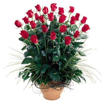 Kars çiçekçi telefonları  10 adet kirmizi gül cam yada mika vazo