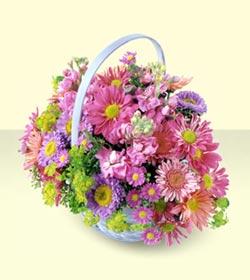 Kars internetten çiçek siparişi  bir sepet dolusu kir çiçegi  Kars cicekciler , cicek siparisi