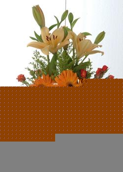 Kars çiçekçi mağazası  cam yada mika vazo içinde karisik mevsim çiçekleri