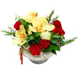Kars 14 şubat sevgililer günü çiçek  1 kandil kazablanka ve 5 adet kirmizi gül