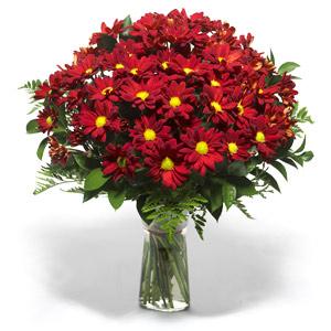 Kars uluslararası çiçek gönderme  Kir çiçekleri cam yada mika vazo içinde