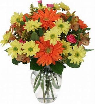 Kars ucuz çiçek gönder  vazo içerisinde karışık mevsim çiçekleri