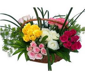 Kars çiçek servisi , çiçekçi adresleri  35 adet rengarenk güllerden sepet tanzimi