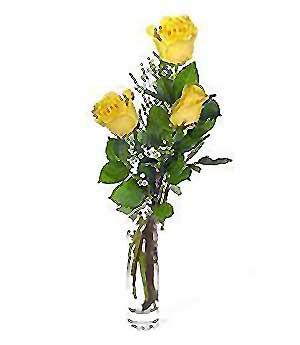 Kars çiçek yolla , çiçek gönder , çiçekçi   3 adet kalite cam yada mika vazo gül
