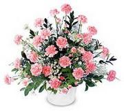 Kars İnternetten çiçek siparişi  Karanfillerden özel aranjman sepet içinde
