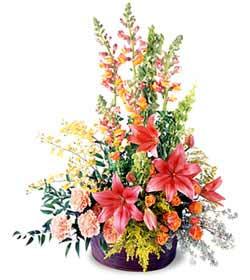 Kars online çiçekçi , çiçek siparişi  Mevsim çiçekleri sepeti
