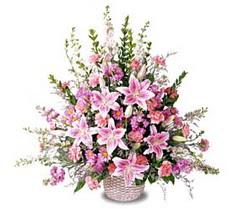 Kars güvenli kaliteli hızlı çiçek  Tanzim mevsim çiçeklerinden çiçek modeli