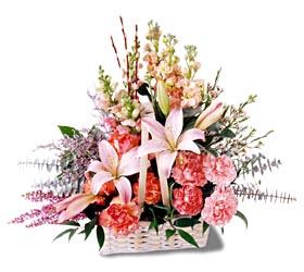 Kars güvenli kaliteli hızlı çiçek  mevsim çiçekleri sepeti özel tanzim