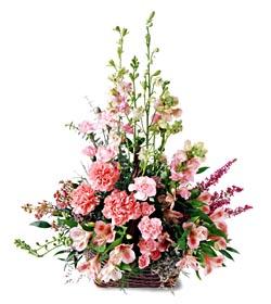 Kars çiçek servisi , çiçekçi adresleri  mevsim çiçeklerinden özel
