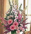 Kars ucuz çiçek gönder  Tanzim Mevsim çiçeklerinden