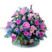 Kars çiçekçi mağazası  mevsim çiçekleri sepeti çiçek yolla için önerilir
