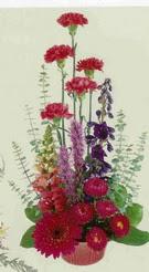 Kars kaliteli taze ve ucuz çiçekler  mevsim çiçeklerinden sepet
