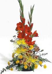 Kars ucuz çiçek gönder  glayör ve mevsim çiçekleri