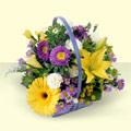 Kars çiçek siparişi vermek  sepette kir çiçeklerinden  Kars uluslararası çiçek gönderme