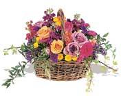 sepette karisik haldeler   Kars çiçek mağazası , çiçekçi adresleri