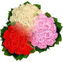 3 renkte gül seven sever   Kars çiçek online çiçek siparişi