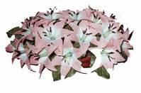 yapay karisik çiçek sepeti   Kars kaliteli taze ve ucuz çiçekler
