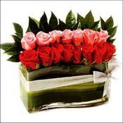 12 adet kirmizi gül ve cam   Kars kaliteli taze ve ucuz çiçekler