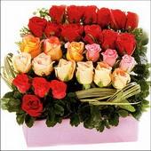 15 adet renkli gül ve cam   Kars kaliteli taze ve ucuz çiçekler