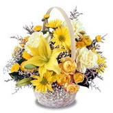 sadece sari çiçek sepeti   Kars cicekciler , cicek siparisi