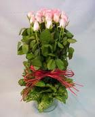 13 adet pembe gül silindirde   Kars uluslararası çiçek gönderme