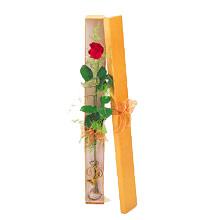 ince  kutuda  1  gül   Kars uluslararası çiçek gönderme