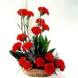Kars çiçek gönderme  sepet içerisinde 17 adet karanfil tanzimi