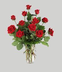 Kars çiçek gönderme  11 adet kirmizi gül vazo halinde