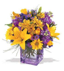 Kars çiçek siparişi sitesi  cam içerisinde kir çiçekleri demeti