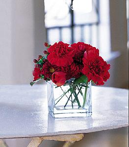 Kars çiçek servisi , çiçekçi adresleri  kirmizinin sihri cam içinde görsel sade çiçekler