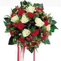 Kars çiçek servisi , çiçekçi adresleri  6 adet kirmizi 6 adet beyaz ve kir çiçekleri buket