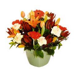 mevsim çiçeklerinden karma aranjman  Kars online çiçek gönderme sipariş