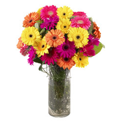 KARISIK GERBERALARDAN CAM VAZO TANZIMI  Kars çiçekçiler