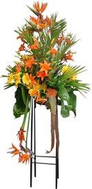 Kars güvenli kaliteli hızlı çiçek  perförje tanzimi dügün nikah ve açilislara
