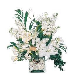Kars çiçek yolla , çiçek gönder , çiçekçi   sadece beyazlardan olusmus mevsim cam yada mika tanzim
