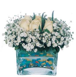 Kars kaliteli taze ve ucuz çiçekler  mika yada cam içerisinde 7 adet beyaz gül