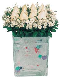 Kars kaliteli taze ve ucuz çiçekler  7 adet beyaz gül cam yada mika vazo tanzim