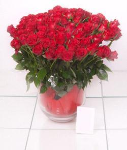 Kars çiçek yolla  101 adet kirmizi gül