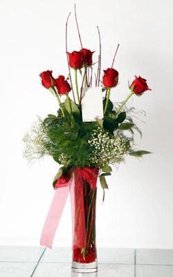Kars çiçek gönderme  6 adet kirmizi gül ve cam yada mika vazo