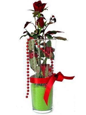 Kars çiçek gönderme sitemiz güvenlidir  Cam yada mika içerisinde 9 adet kirmizi gül - sevdiklerinize özel