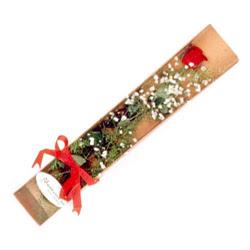 Kars çiçek online çiçek siparişi  Kutuda tek 1 adet kirmizi gül çiçegi