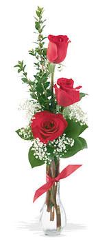 Kars çiçek gönderme  mika yada cam vazoda 3 adet kirmizi gül