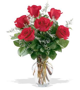 Kars çiçek gönderme  cam yada mika vazoda 6 adet kirmizi gül