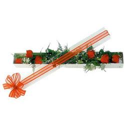 Kars güvenli kaliteli hızlı çiçek  6 adet kirmizi gül kutu içerisinde