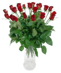 Kars anneler günü çiçek yolla  11 adet kimizi gülün ihtisami cam yada mika vazo modeli