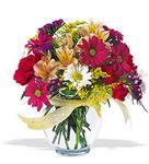 Kars çiçek online çiçek siparişi  cam yada mika vazo içerisinde karisik kir çiçekleri
