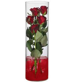 cam içerisinde 7 adet kirmizi gül  Kars online çiçekçi , çiçek siparişi