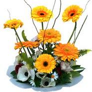 camda gerbera ve mis kokulu kir çiçekleri  Kars anneler günü çiçek yolla