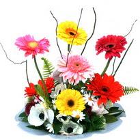 Kars çiçek mağazası , çiçekçi adresleri  camda gerbera ve mis kokulu kir çiçekleri