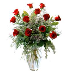 Vazo içerisinde 11 kirmizi gül  Kars İnternetten çiçek siparişi
